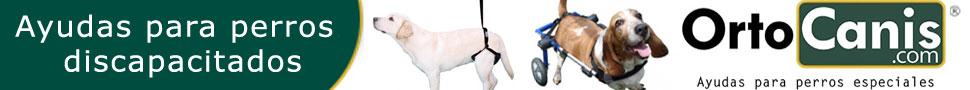OrtoCanis - Ayudas para perros especiales