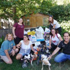 El domingo pasado nos visitaron los compañeros de la Asociación Canina de Móstoles, y nos trajeron un montón de pienso y una silla de ruedas pequeña que nos viene genial para nuestra nueva chica MAGDALENA.